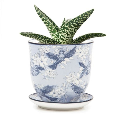 Chive Bluebirds und Blumen Liberte Keramik Mini Pflanzgefäße 01