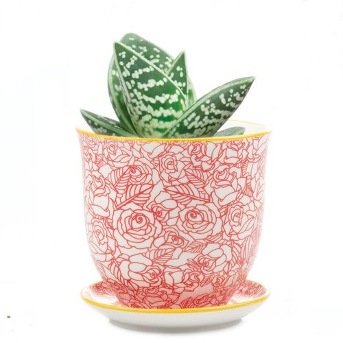 Chive Mini jardineras de cerámica Red Rose Liberte 002