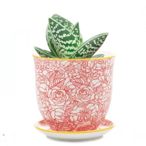 Chive Rote Rose Liberte Keramik Mini Pflanzgefäße 002
