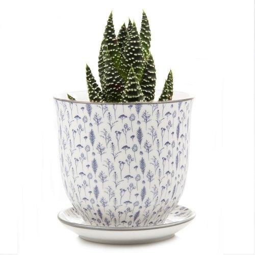 Chive Samen und Gräser Liberte Keramik Mini Pflanzgefäße 005