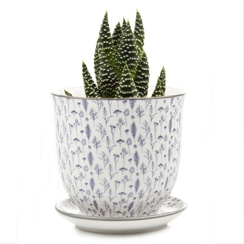 Chive Seeds and Grasses Liberte ceramic mini planters 005