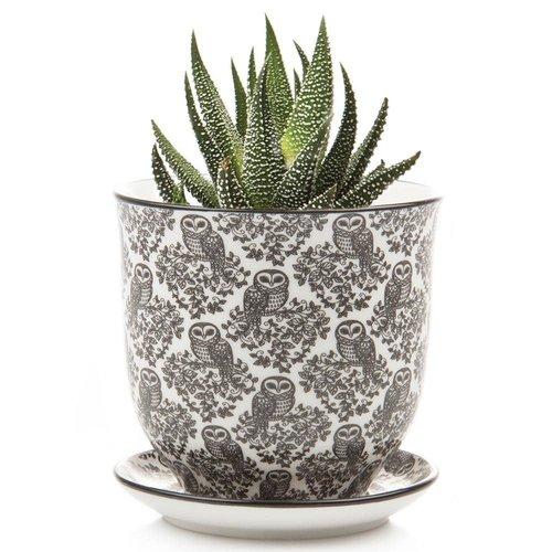Chive Mini jardineras de cerámica Owl Liberte 006