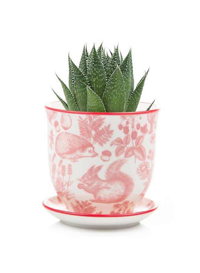 Red Squirel Liberte Keramik Mini Pflanzgefäße 007