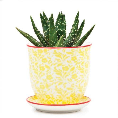 Chive Mini jardineras de cerámica Yellow Flower Liberte 008