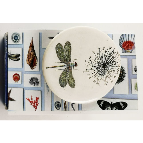 Caroline Barnes Dragonfly and seed head round ceramic pin brooch 021