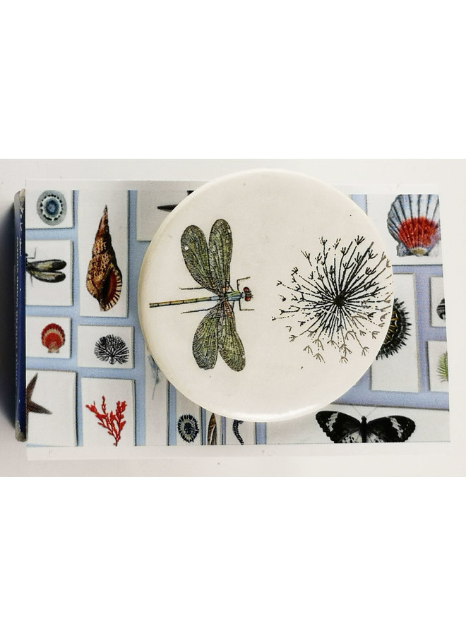 Dragonfly and seed head round ceramic pin brooch 021