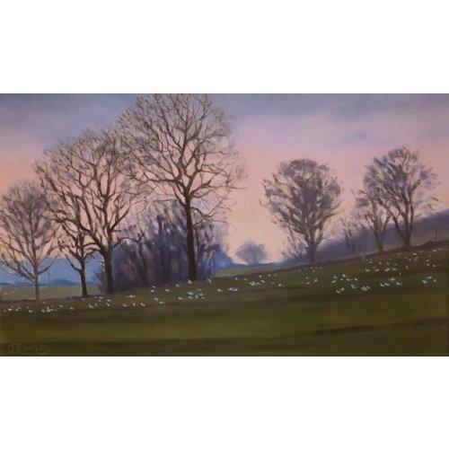 Jane Burgess Evening Light, Coverdale  Oil 013