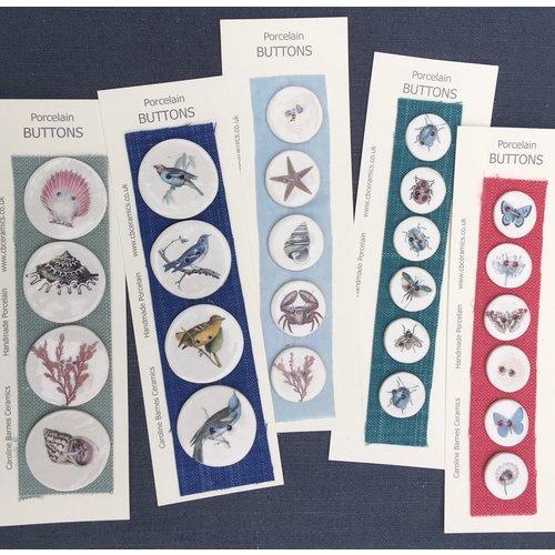 Caroline Barnes Bugs strip 6 small ceramic buttons 030