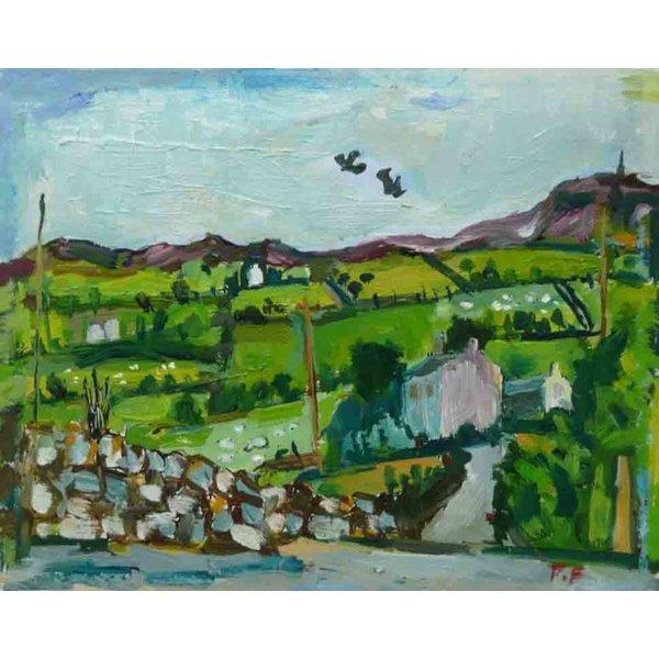 Stoodley Pike with Hawks 031