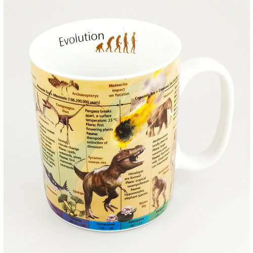 Konitz Taza Evolution Large Knowledge