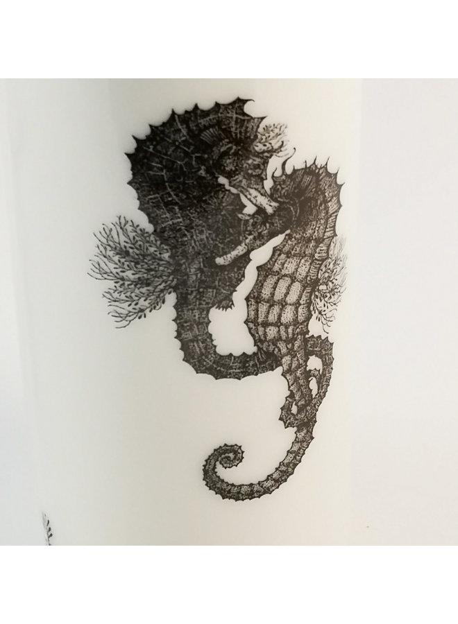 Seepferdchen Florida Wasserflasche 147