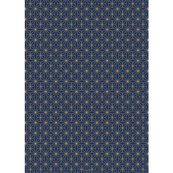 Copy of Peacock Feather Blue and gold gift wrap 03