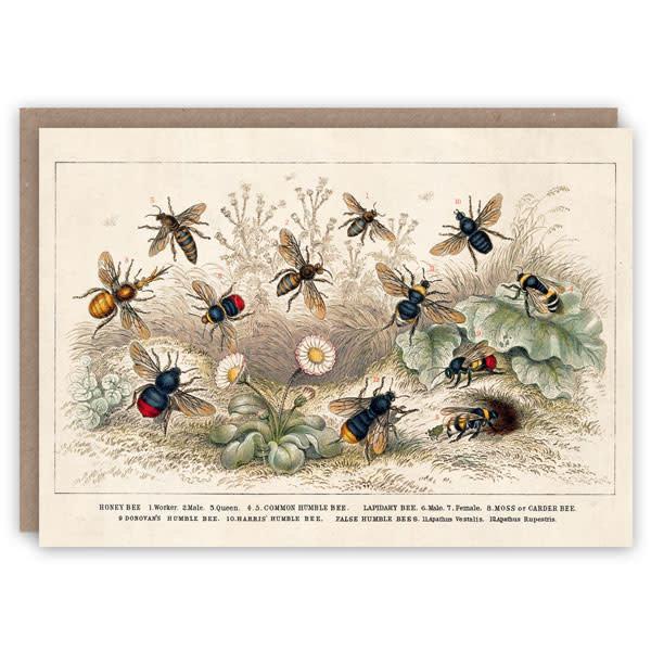 Honey Bee Pattern-boekkaart