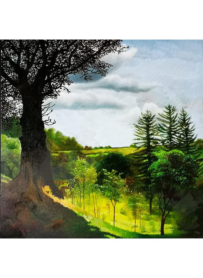 Junge Bäume der Hoffnung 049