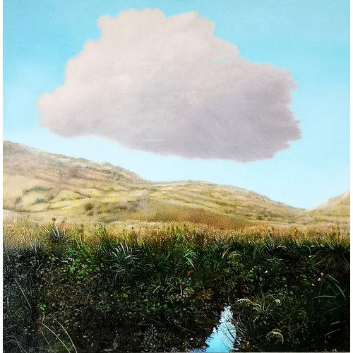 Sara Philpott Cloud boven een Upland Stream 047