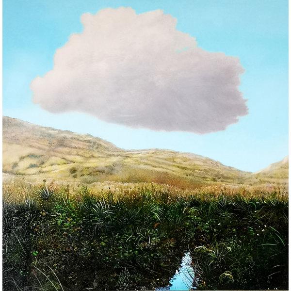 Cloud boven een Upland Stream 047