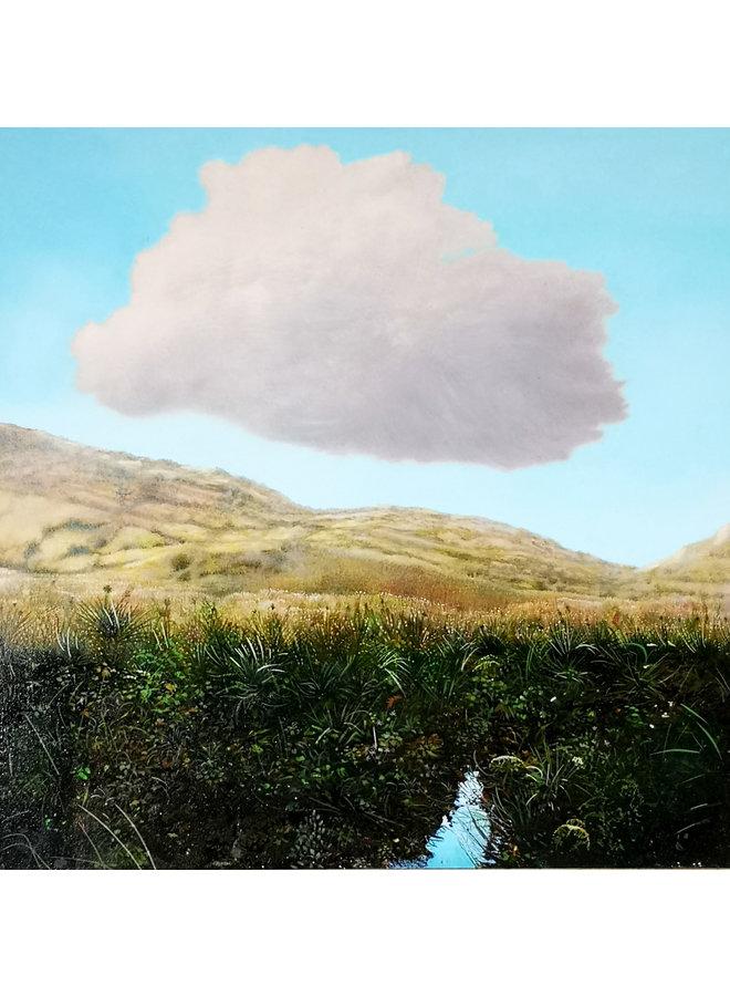 Wolke über einem Hochlandstrom 047