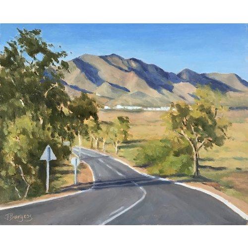 Jane Burgess Camino a Rodaquilar 015