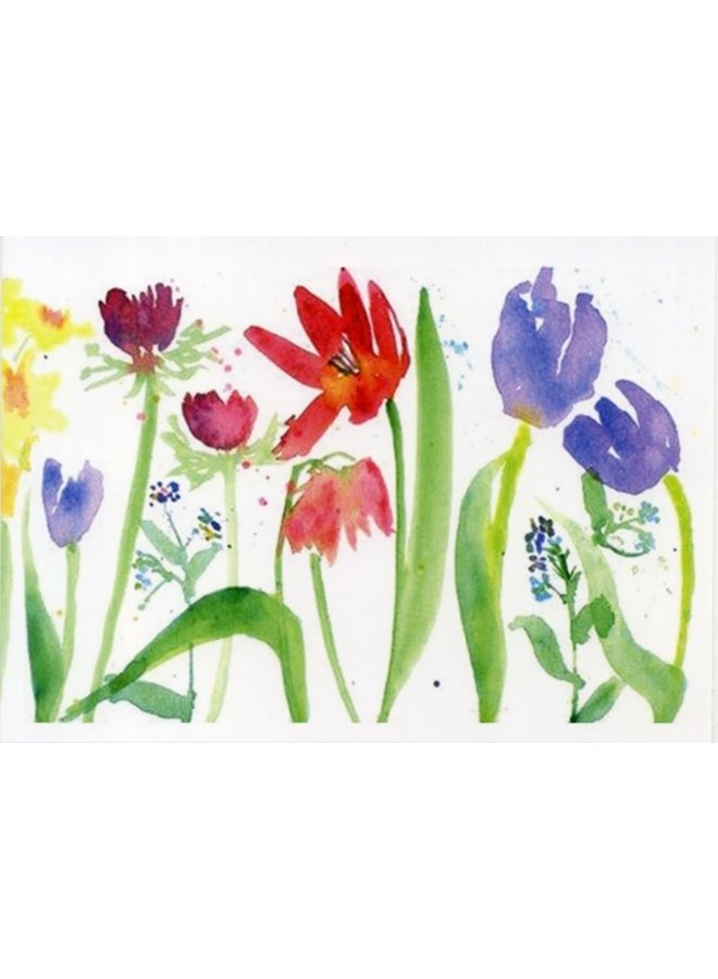 Spring Boarder von Helen Clarke 180x 140mm Karte