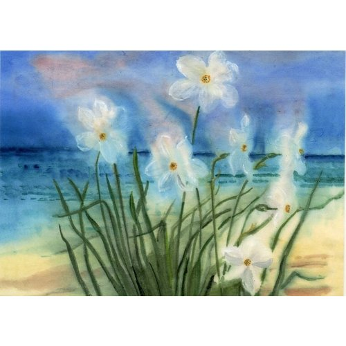 Artists Cards Seaside Narcissi door Norman Westwood 180x 140mm kaart