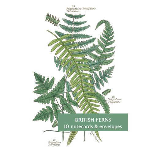Fitzwilliam Museum Paquete de 10 tarjetas de helechos Brithish