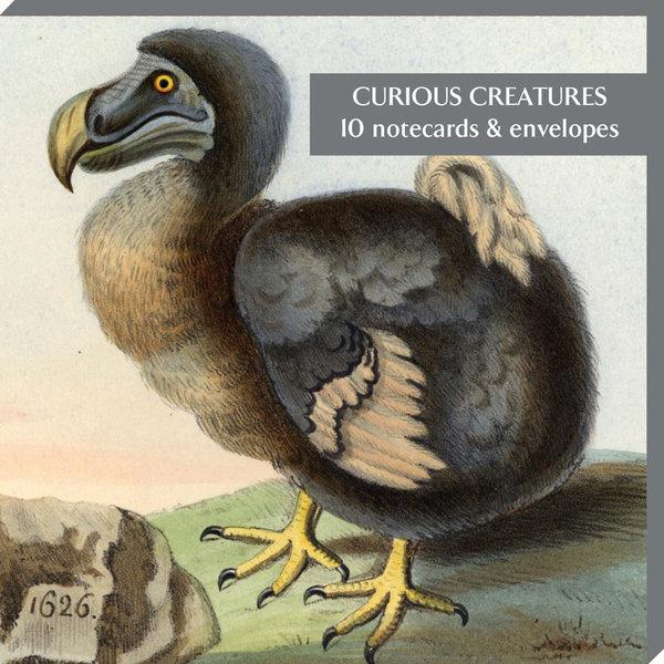 Curious Creatures 10 Notecard Pack