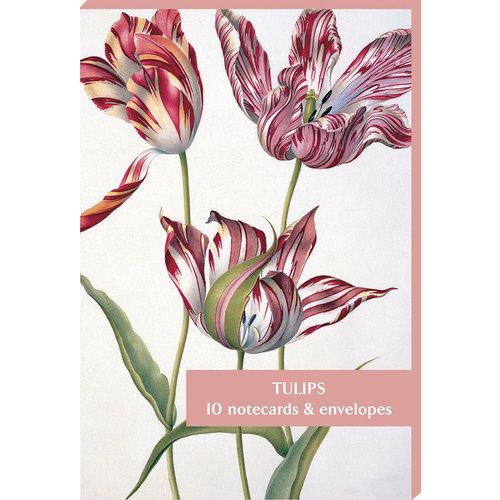 Fitzwilliam Museum Paquete de 10 tarjetas de tulipanes