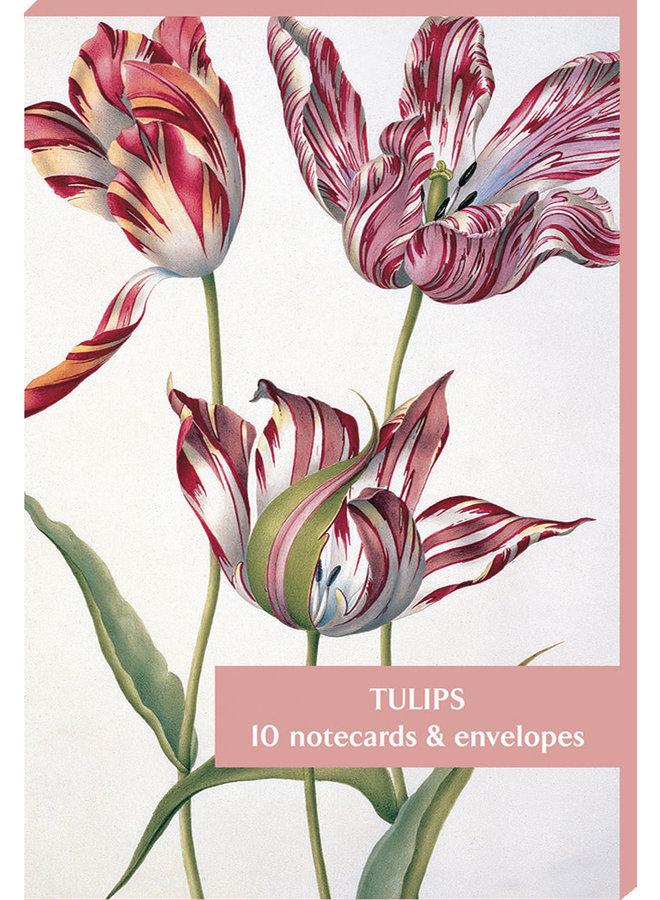 Tulpen 10 Notecard Pack