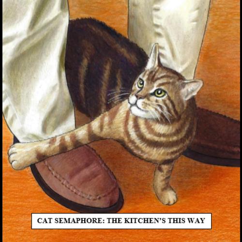 Adrian Keefe Cat Semaphore Humorous  Cat card 24