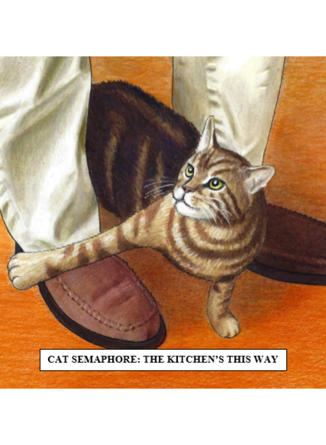 Cat Semaphore Humorous  Cat card 24