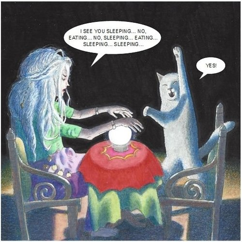Adrian Keefe Fortune Teller Humorous Cat card 21