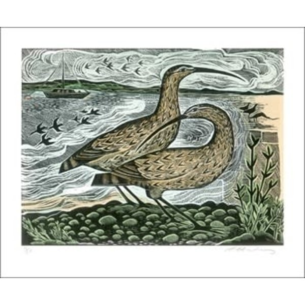 Two Curlews on the Deben door Angela Harding