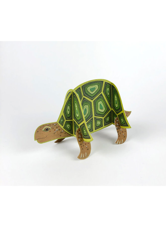 Tortoise Pop-Out card byAlice Melvin