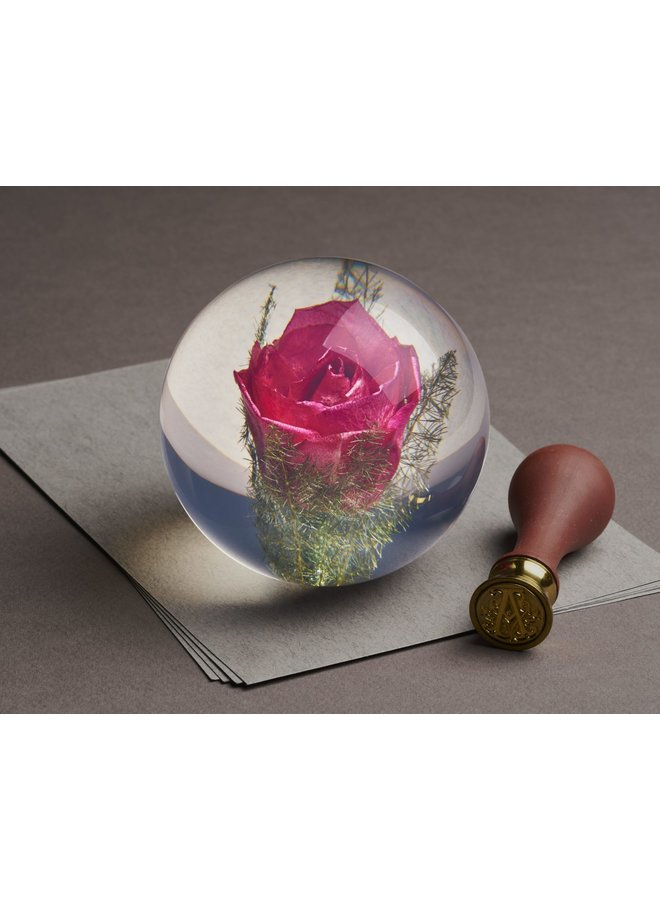 Red Rose real flower paper weight 12