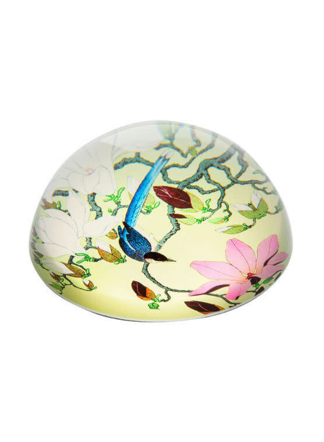 Magpie and Magnolia by Kosn  Paperweight 095