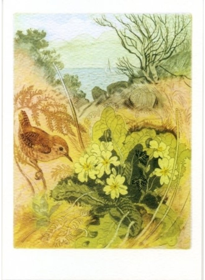 Wren and Primroses by D Koster 140x 180mm card