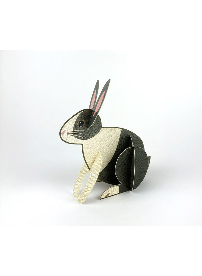 Rabbit  Pop-Out card by Alice Melvin
