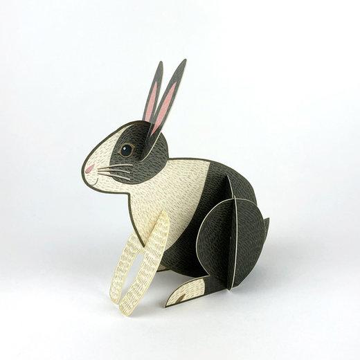 Hasen und Kaninchen springen