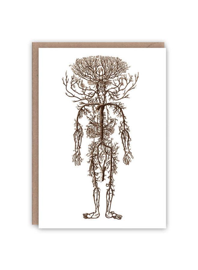 Arterial Man Musterbuchkarte