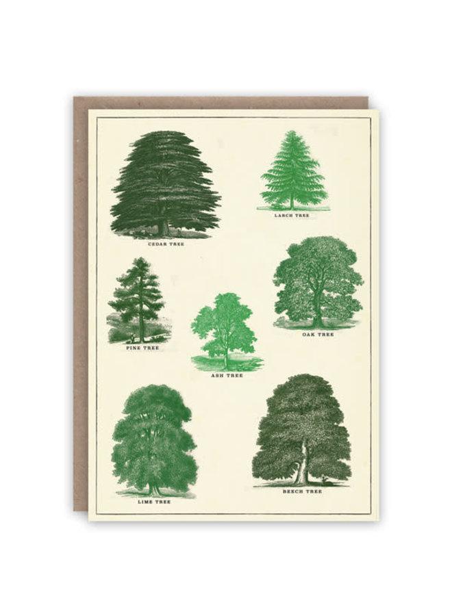 Baummuster-Buchkarte