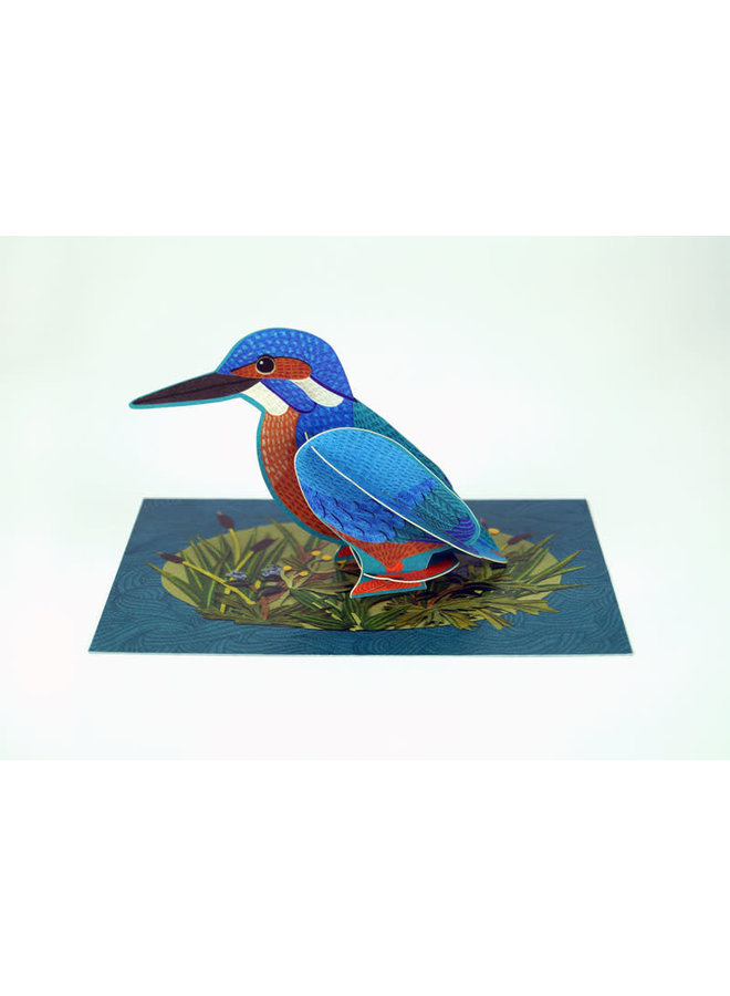 Kingfisher  Pop-Out card byAlice Melvin