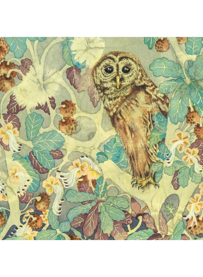 Hoot Owl in Tree square card 30