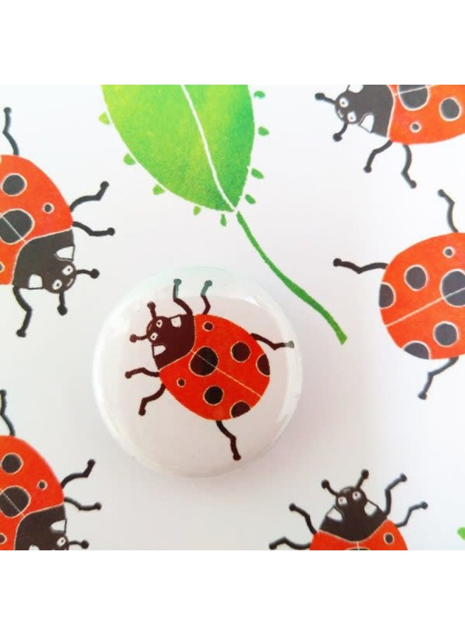 Ladybird  Badge  Card  67