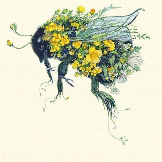 Blüten & Bienen