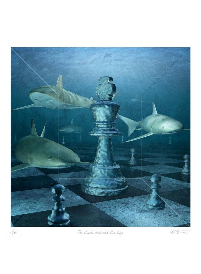 Die Haie umzingelten den König 07
