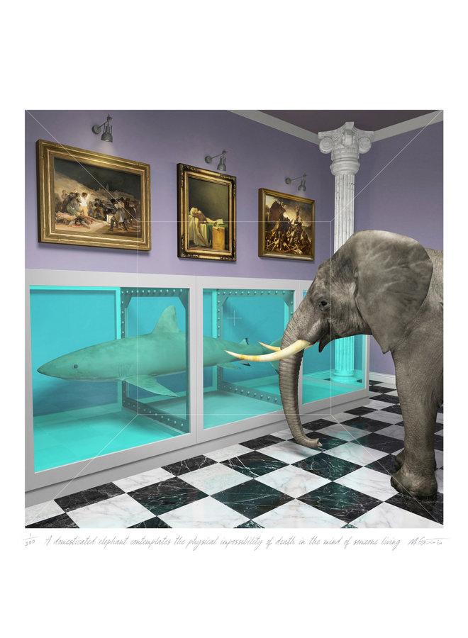 Ein domestizierter Elefant denkt über die physische Unmöglichkeit des Todes nach 10