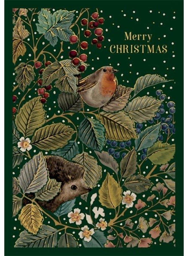 Robin und Igel Frohe Weihnachtskarte