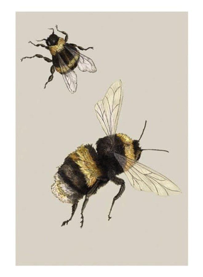 Bienen-Naturgeschichte-Karte von Ben Rothery