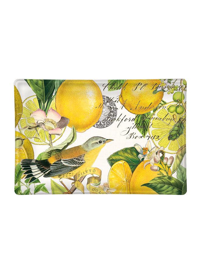 Zitronen-Basilikum-Seifenschale aus Glas