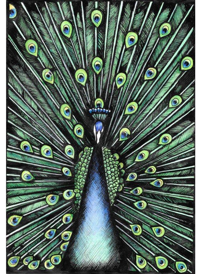 Pfau - Ausgabe 3 von 150 - 10